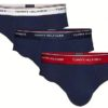 Tommy Hilfiger 3 Pack Brief Premium Essentials slipy modré/tricolor pás